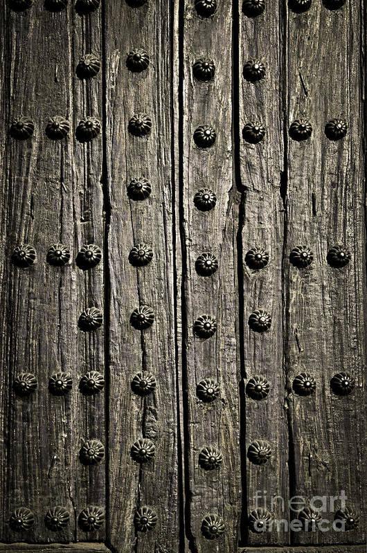 Door Print featuring the photograph Door Detail by Elena Elisseeva