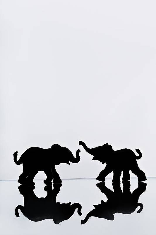 Animals Print featuring the photograph Elephant Pair Reflection by Chris Knorr