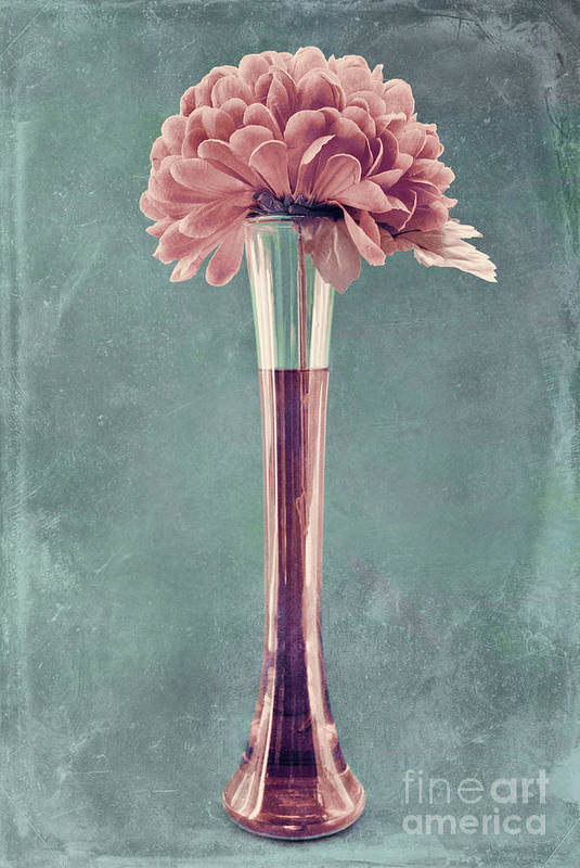 still Life Print featuring the photograph Estillo Vase - S01v4b2t03 by Variance Collections