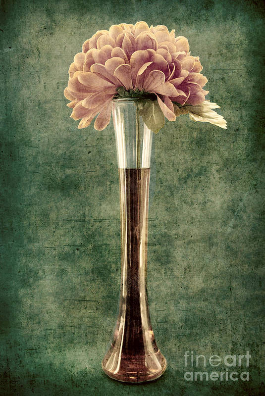 still Life Print featuring the photograph Estillo Vase - S02et01 by Variance Collections
