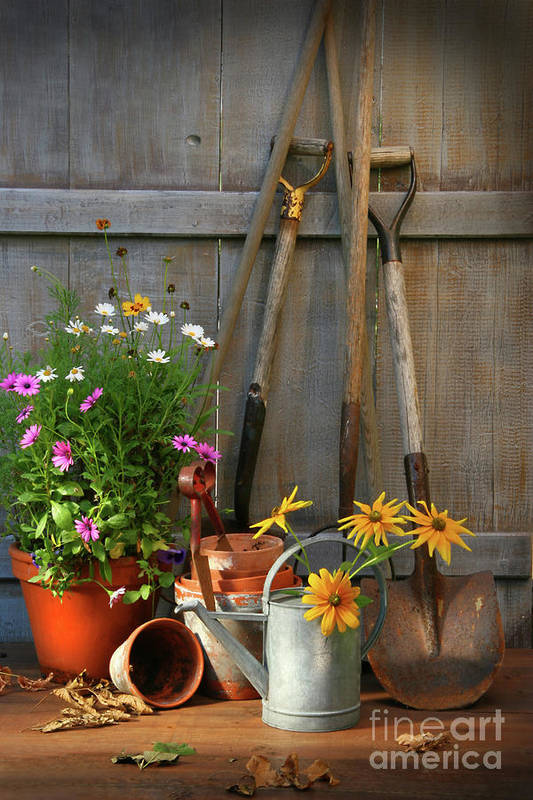 Activity Print featuring the photograph Garden Shed With Tools And Pots by Sandra Cunningham