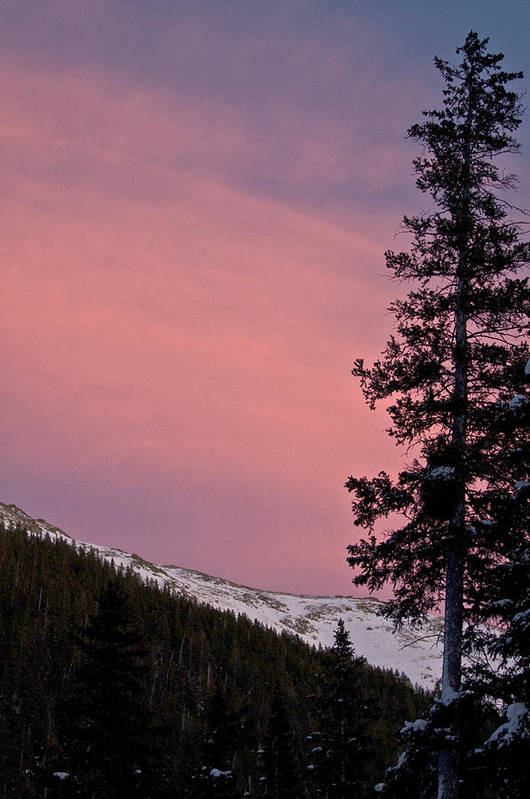 Landscape Print featuring the photograph Pink Sunset by Lisa Spencer