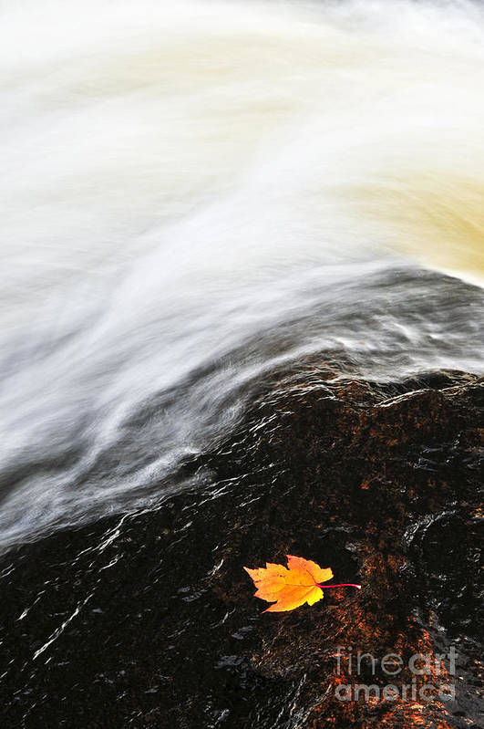 River Print featuring the photograph River In Fall by Elena Elisseeva