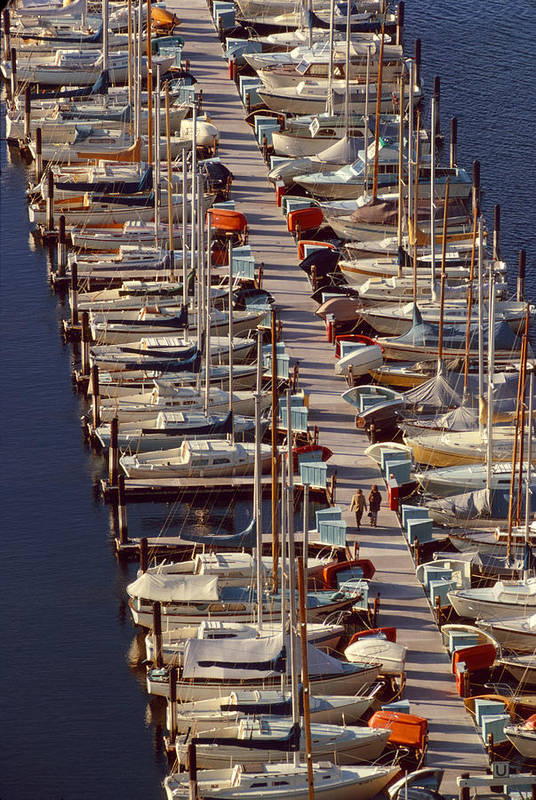 Vertical Print featuring the photograph Sailboats At Moorage by Harald Sund