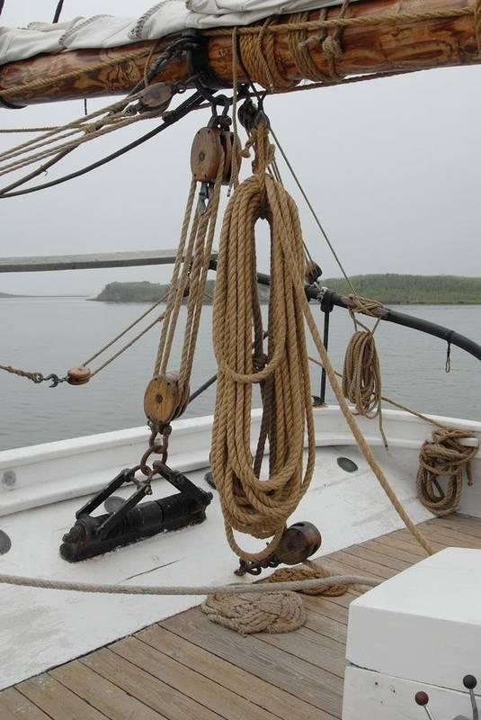 Sailing Ship Print featuring the photograph Ship 32 by Joyce StJames