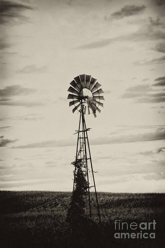 Iowa Print featuring the photograph Iowa Windmill In A Corn Field by Wilma Birdwell