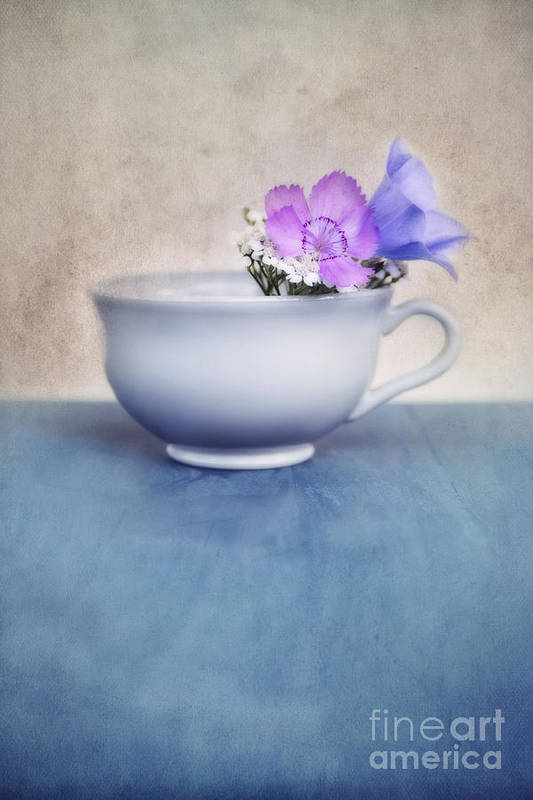 .cup Print featuring the photograph New Life For An Old Coffee Cup by Priska Wettstein