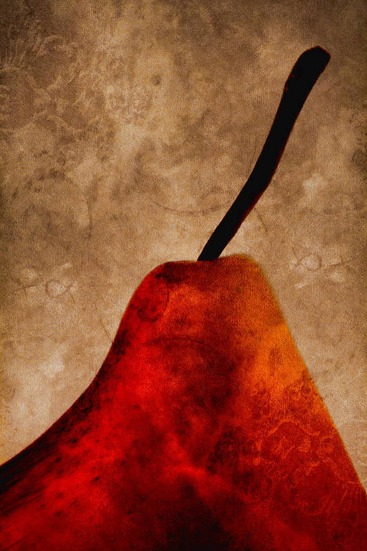 Pear Print featuring the photograph Red Pear IIi by Carol Leigh