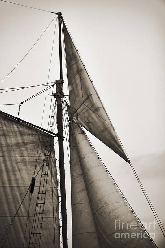 Tall Ship Print featuring the photograph Schooner Pride Tall Ship Yankee Sail Charleston Sc by Dustin K Ryan