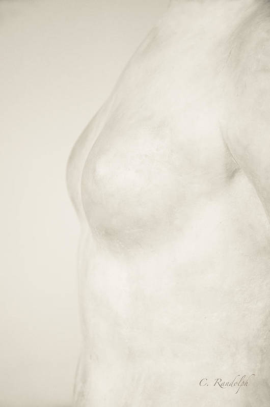 Nude Print featuring the photograph Torso Suggested by Cheri Randolph