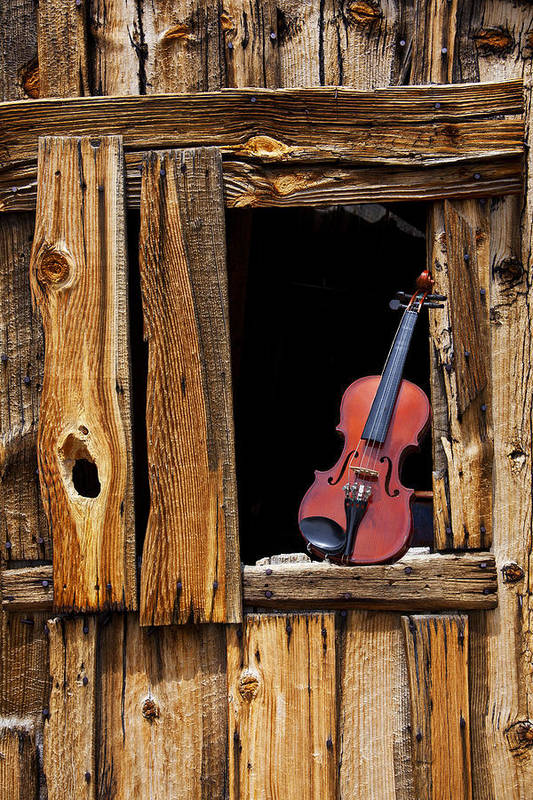 Viola Print featuring the photograph Violin In Window by Garry Gay