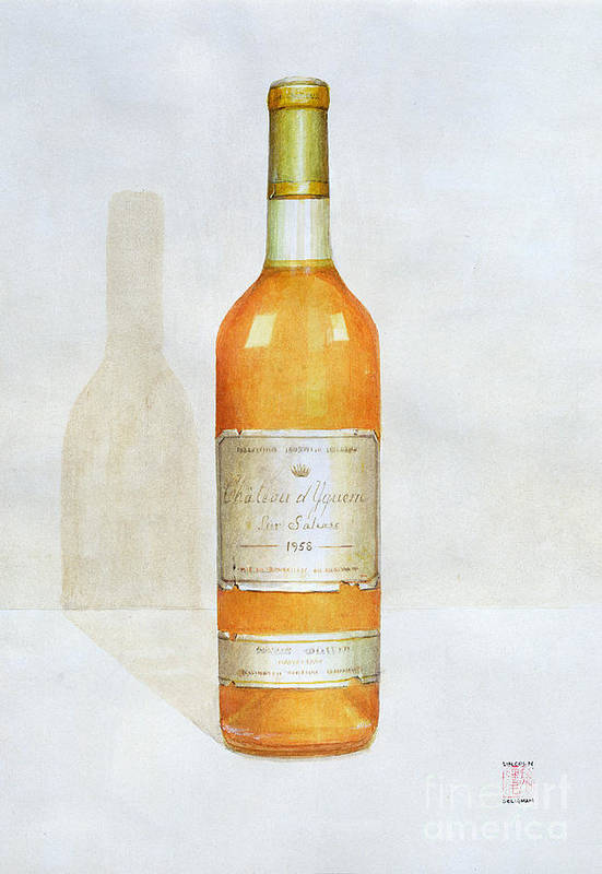 Bottle; Wine; Alcohol; Beverage; Label; Shadow; Labels Print featuring the painting Chateau D Yquem by Lincoln Seligman