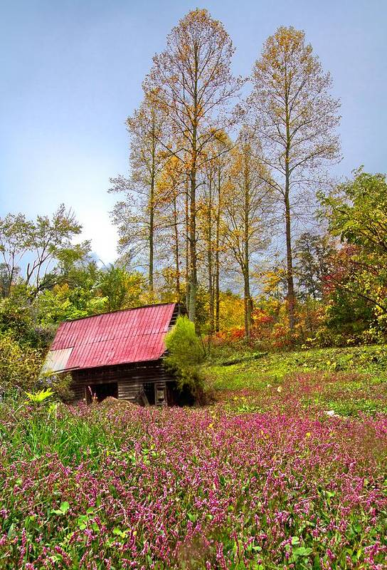 Appalachia Print featuring the photograph The Old Barn At Grandpas Farm by Debra and Dave Vanderlaan