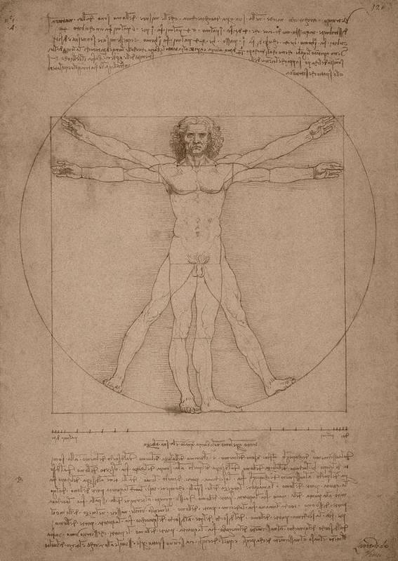 Leonardo Da Vinci Print featuring the drawing Vitruvian Man by War Is Hell Store