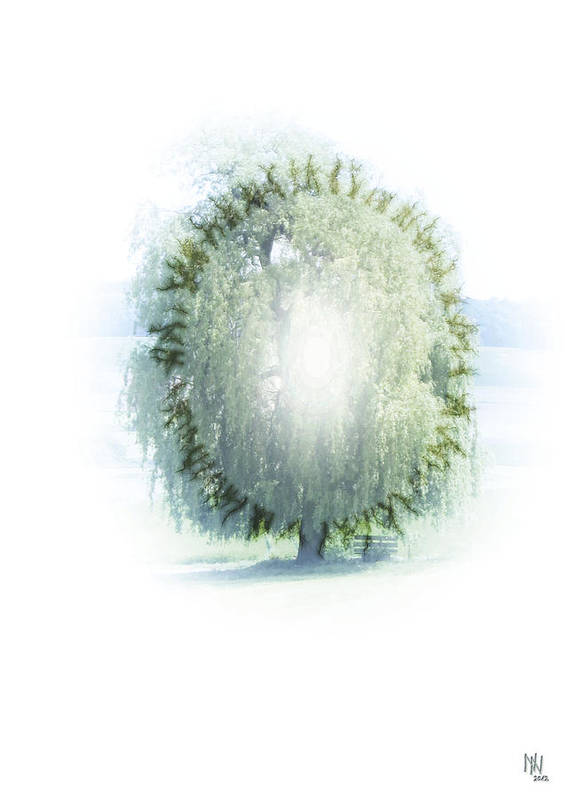 Enlightenment Print featuring the digital art Enlightment Of The Willow by Nafets Nuarb
