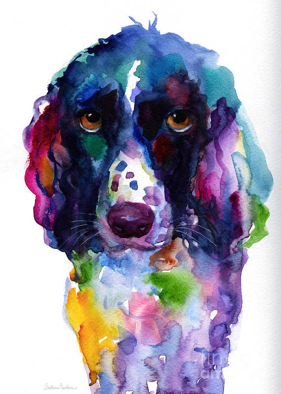 Colorful english springer setter spaniel dog portrait art for Dog painting artist