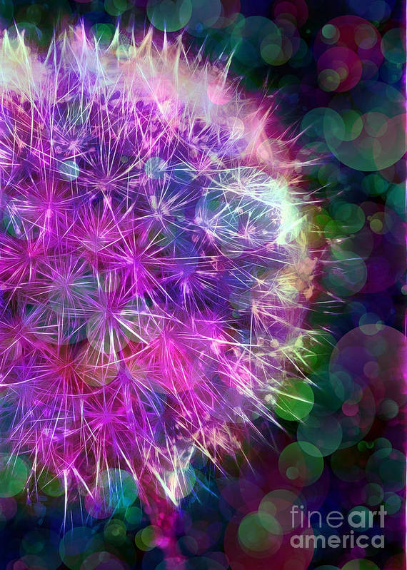 Dandelion Print featuring the photograph Dandelion Party by Judi Bagwell