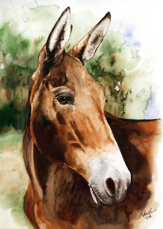 Mule Print featuring the painting Francis by Nadi Spencer