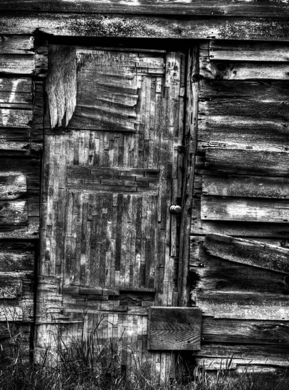 Old Wooden Door Print featuring the photograph Long Time My Friend by Thomas Young