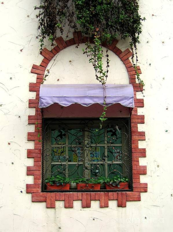 Window Print featuring the photograph Pretty Decorated Window by Yali Shi