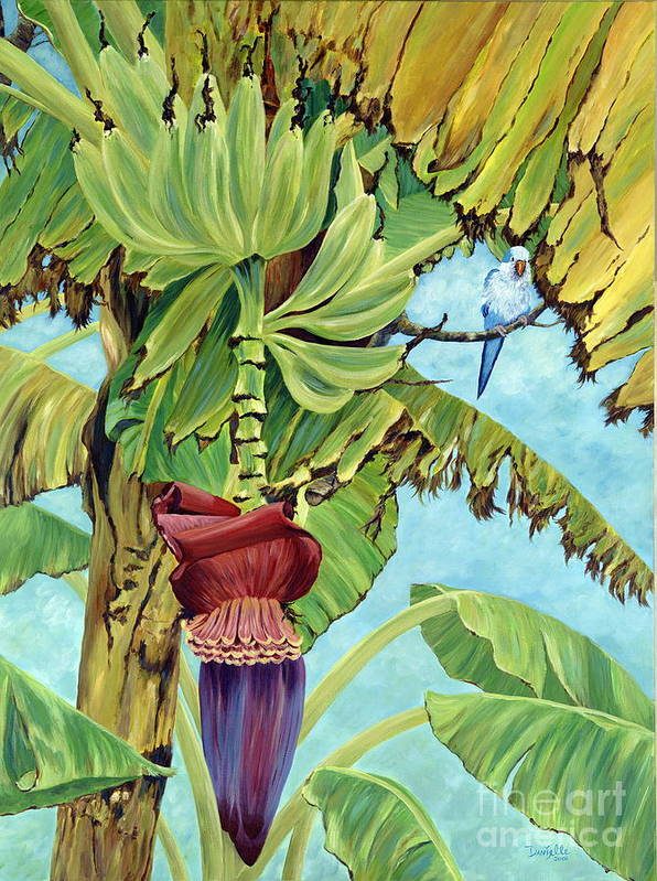 Tropical Print featuring the painting Little Blue Quaker by Danielle Perry