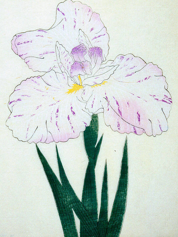 Floral Print featuring the painting Japanese Flower by Japanese School