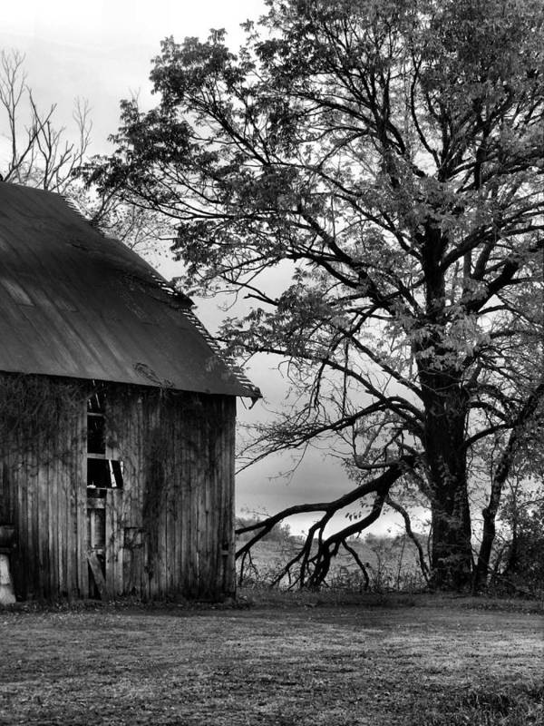 Barn Print featuring the photograph At The Barn In Bw by Julie Dant