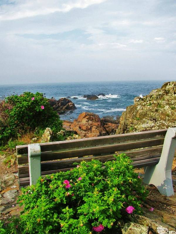 Ogunquit Print featuring the photograph Marginal Way by Diane Valliere