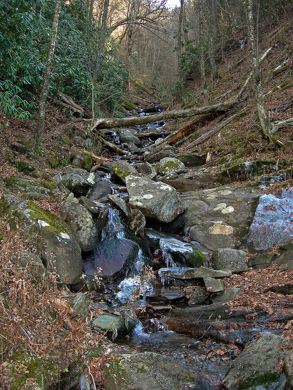 Smokey Mountains Print featuring the photograph Just A Creek by Skip Willits