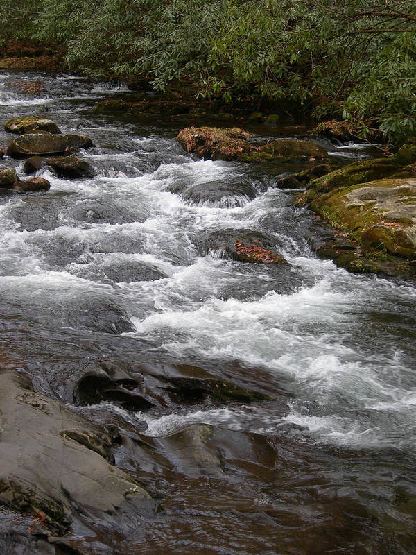 Tn Print featuring the photograph Mountain Stream by Skip Willits