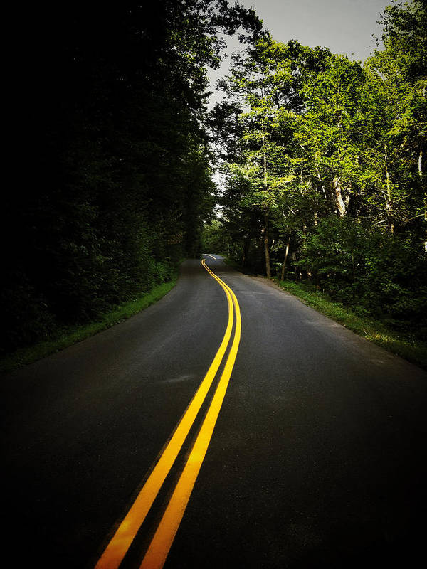 Road Print featuring the photograph The Long And Winding Road by Natasha Marco