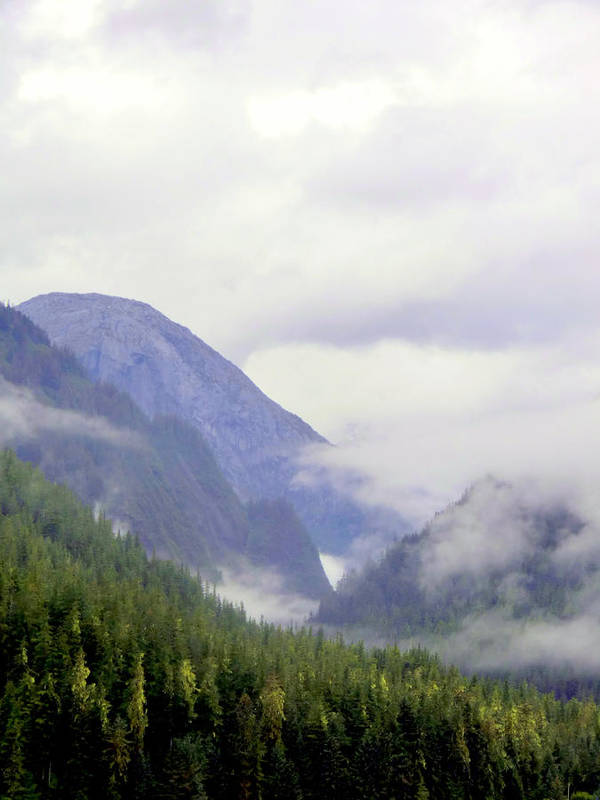 Mountains Print featuring the photograph Purple Mountain Majesties by Mindy Newman