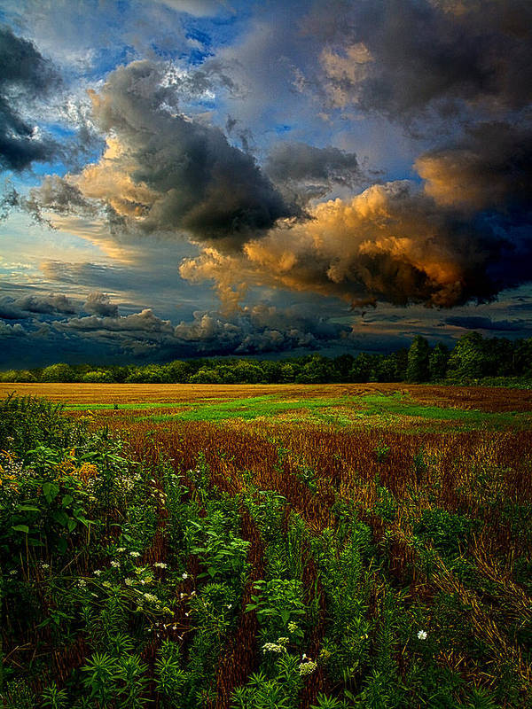 Horizons Print featuring the photograph Places In The Heart by Phil Koch