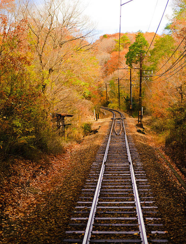 Vertical Print featuring the photograph Railway Track by (c) Eunkyung Katrien Park