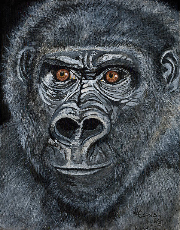 Silverback Gorilla Print featuring the painting Silverback by Janis Cornish