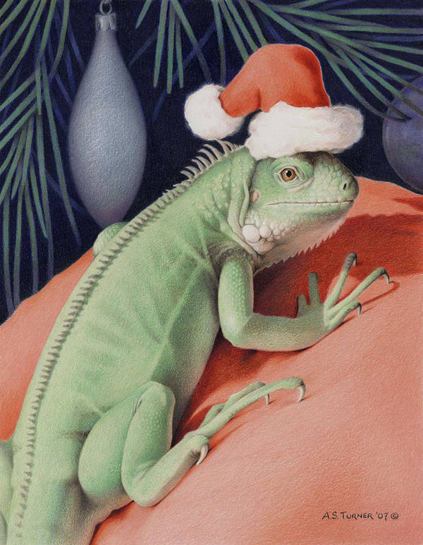 Lizard Print featuring the drawing Santa Claws - Bob The Lizard by Amy S Turner
