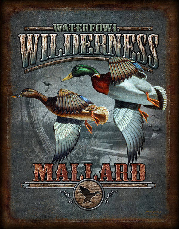 Bruce Miller Print featuring the painting Wilderness Mallard by JQ Licensing