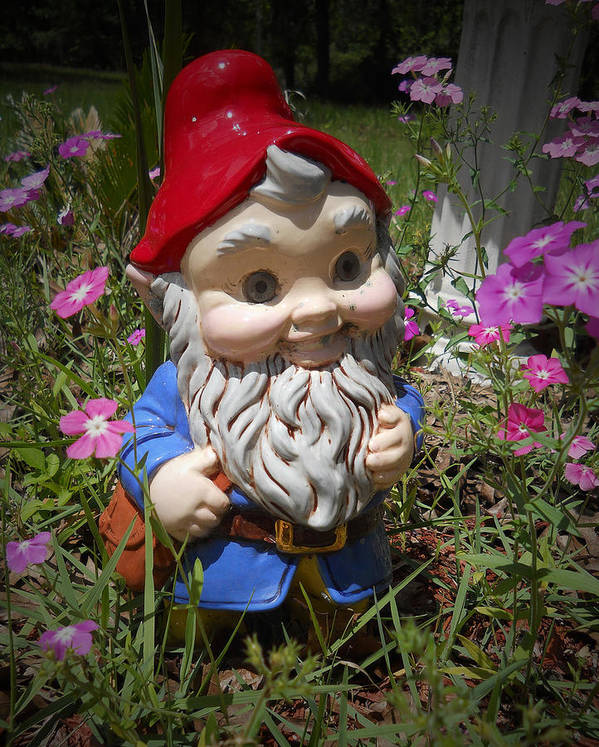 Garden Print featuring the photograph Garden Gnome by Judy Hall-Folde