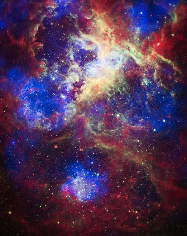Tarantula Nebula Print featuring the photograph Tarantula Nebula 2 by The Vault - Jennifer Rondinelli Reilly