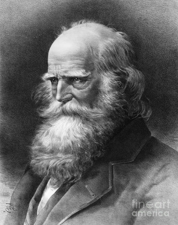 1884 Print featuring the photograph William Cullen Bryant by Granger