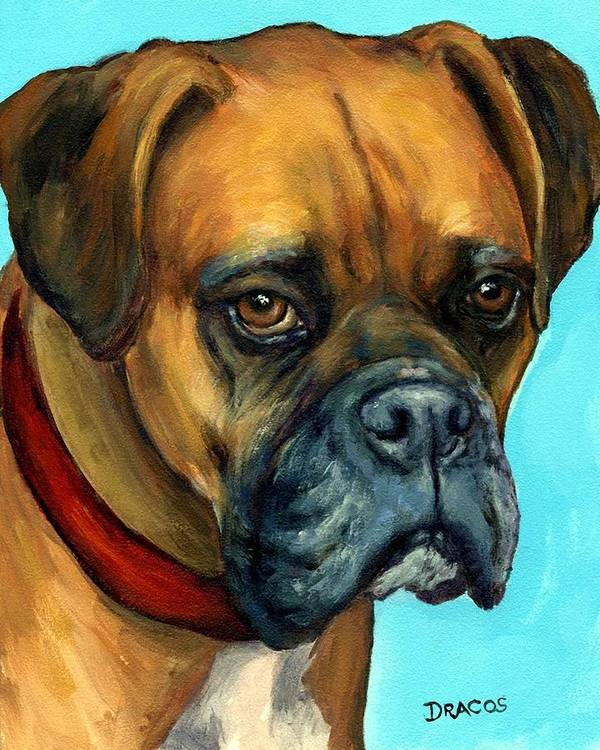 Boxer Print featuring the painting Brown Boxer On Turquoise by Dottie Dracos