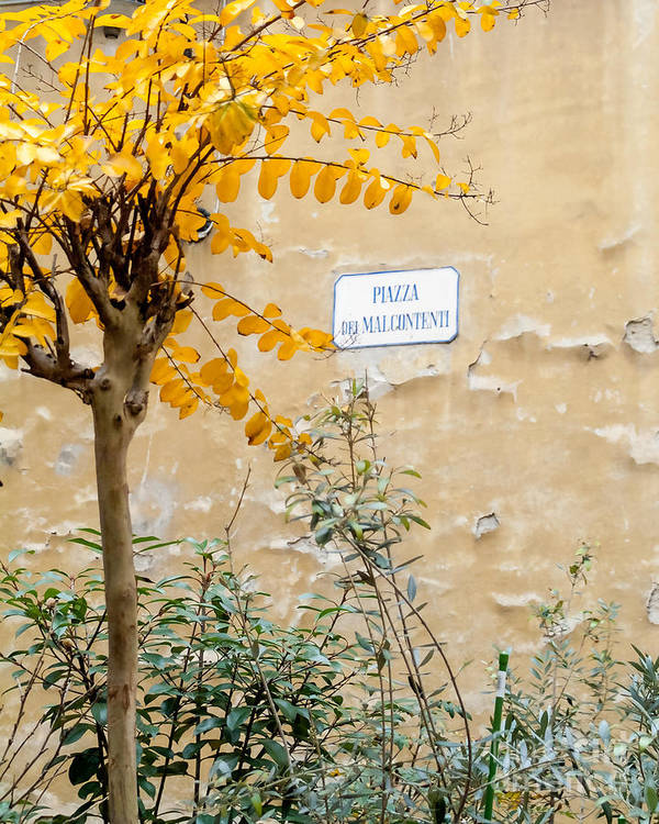 Italy Print featuring the photograph Il Piazza Malcontenti by Michael Flood