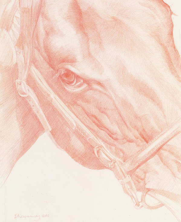 Horse Print featuring the drawing Portrait Head by Emma Kennaway