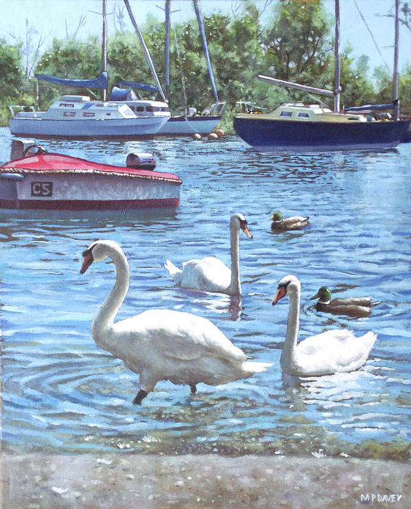 Christchurch Print featuring the painting Christchurch Harbour Swans And Boats by Martin Davey
