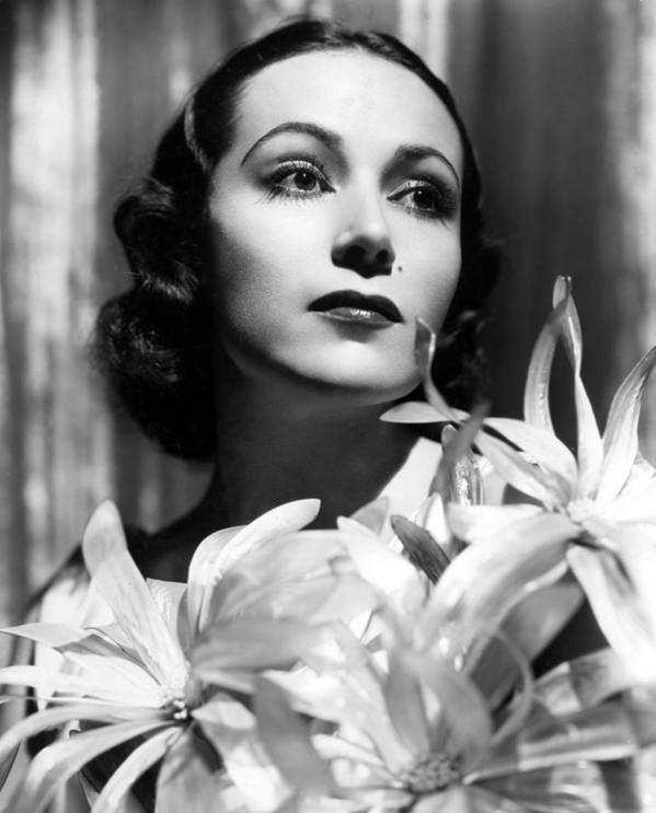 1930s Portraits Print featuring the photograph Dolores Del Rio, Portrait Ca. 1934 by Everett