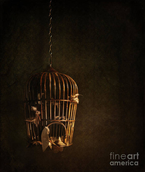 Atmospheric Print featuring the photograph Old Wooden Bird Cage With Feathers by Sandra Cunningham