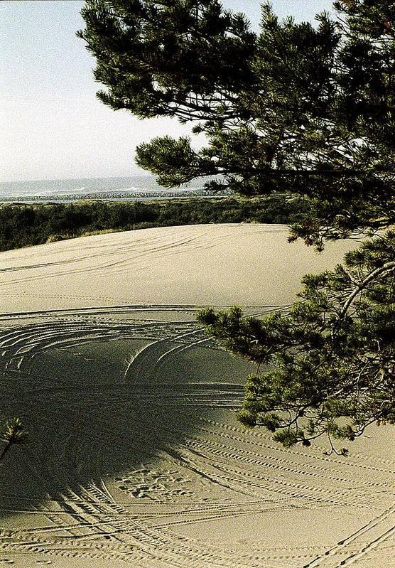 Oregon Dunes National Recreation Area Print featuring the photograph Oregon Dunes 3 by Eike Kistenmacher