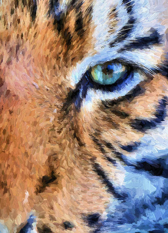 Tiger Print featuring the photograph Eye Of The Tiger by JC Findley