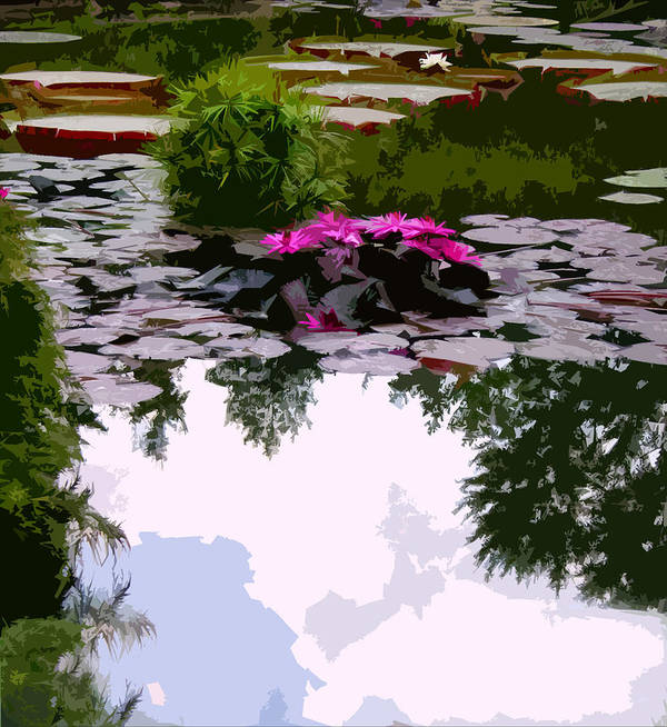 Water Lilies Print featuring the photograph Patterns Of Peace by John Lautermilch