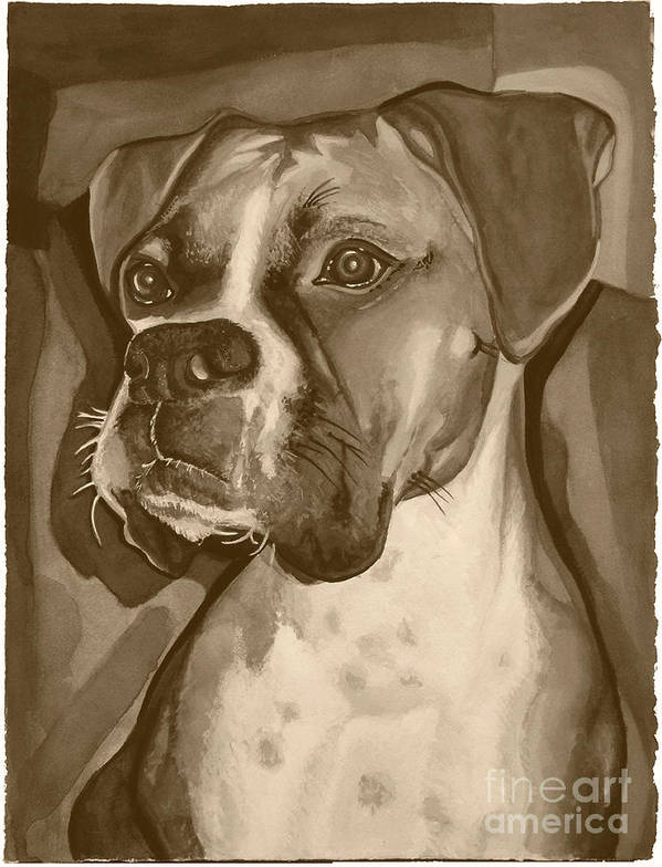 Boxer Print featuring the painting Boxer Dog Sepia Print by Robyn Saunders
